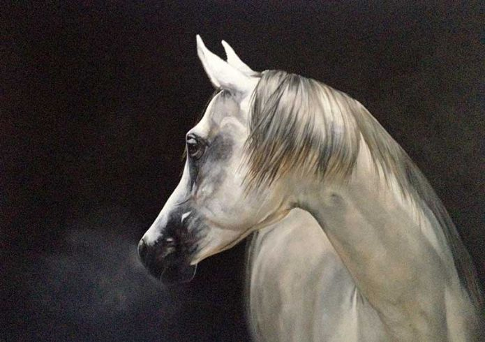 'Stag and Stallion' by Tony O'Connor 2014